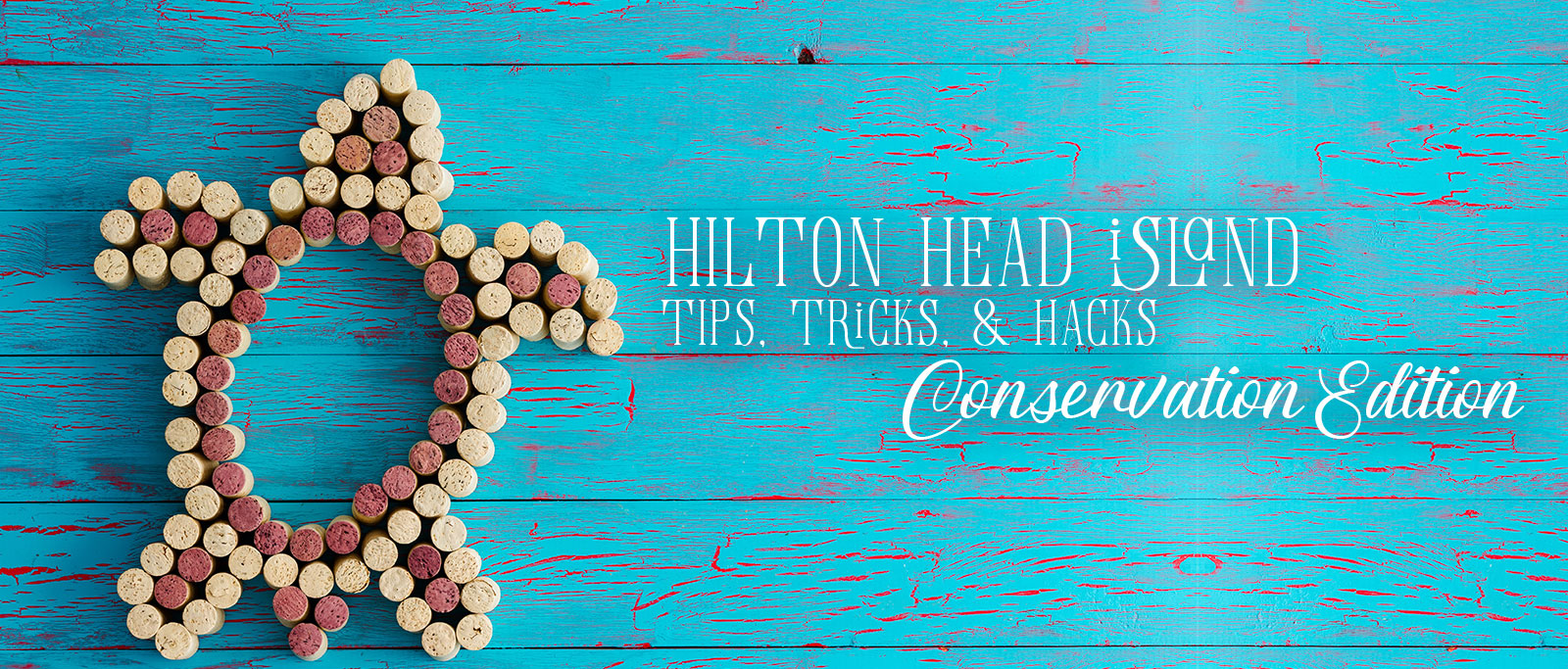 hilton-head-islandcast-episode-29-conservation-edition